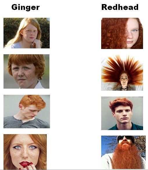Redhead Ginger 33
