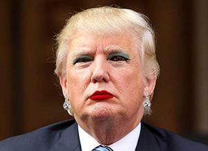 Image result for trump tranny