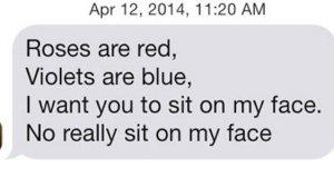 Poem pick up lines