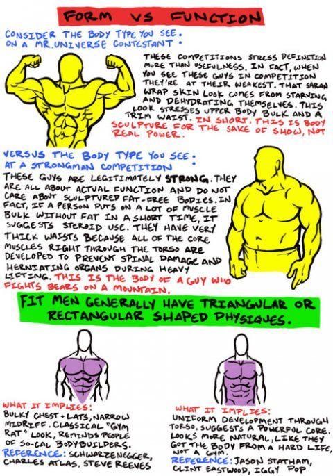 Except this image is information garbage  Bodybuilders aren