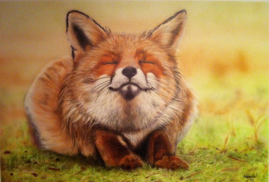 Картинки про лисичку прикольные, февраля аппликация